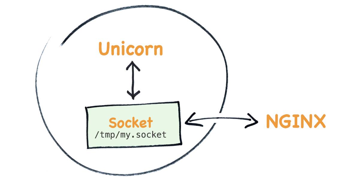 How unicorn talks to nginx - an introduction to unix sockets
